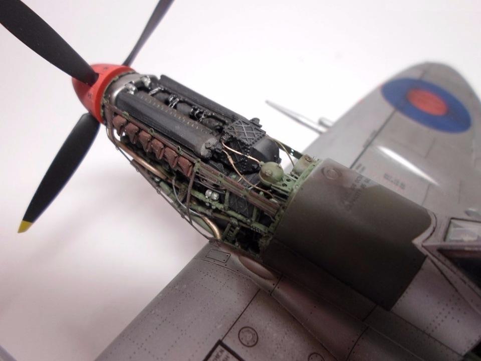 Supermarine Spitfire Eduard 1/48 E68bcc3e888c