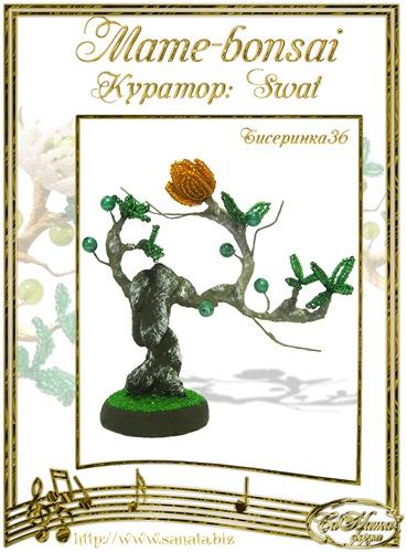 """Галерея """"Mame-bonsai"""" Fe0624132e2ct"""