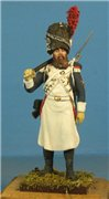 VID soldiers - Napoleonic french army sets 841a3a885d4et