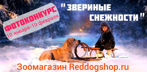 Интернет-магазин Red Dog- только качественные товары для собак! - Страница 3 E20c4c873b6a