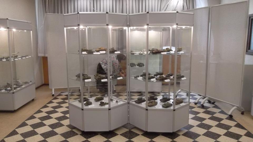 Мы участвуем в клубной модельной выставке (2017). 09f7ed971efe