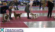 ЕВРАЗИЯ - 2012 831831cf5467t