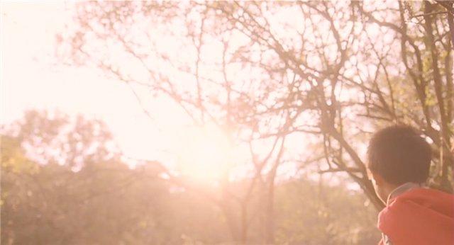 """Отталкивающее, переворачивающее, просветляющеее...короче... """"умное"""" кино - Страница 14 B38a9d0952c1"""