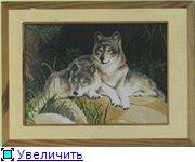 Планируем совместный отшив волков!!! - Страница 2 85ebe32ebd84t