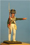 VID soldiers - Napoleonic russian army sets E2bb0c3535f1t