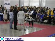 ЕВРАЗИЯ - 2012 6fa823039cc8t
