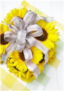 Цветы (flowers) 514ace3ed983t