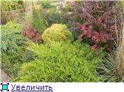 Cад Людмилы Ивановой из черкасс Ad9f49f66fect