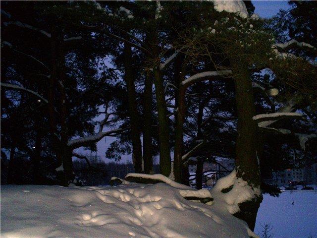 Зимняя сказка на наших фотографиях - Страница 2 80d21b2f2a48