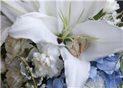 Цветы (flowers) F40f3a5877c5t