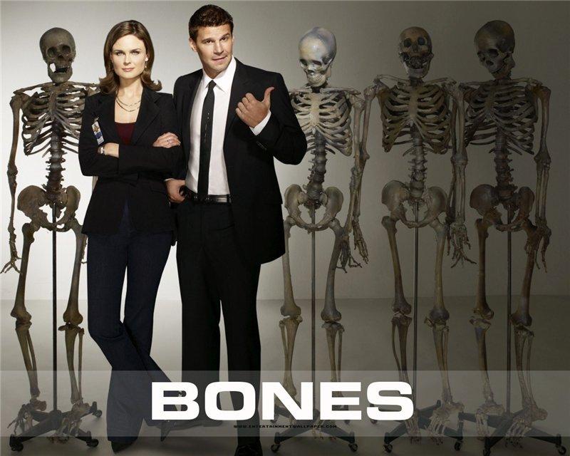 Кости / Bones 4f264f5d4428