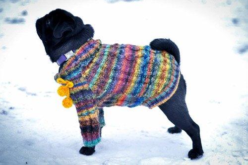 Magic Charm - ошейники, поводки, ринговки, вязаная одежда и другие аксессуары для собак 82190dac1f93