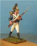 VID soldiers - Napoleonic wurttemberg army sets 1ee76afbe61et