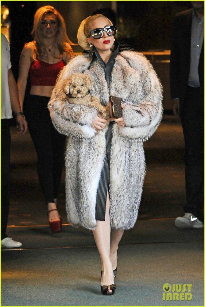 Lady GaGa  - Страница 4 6366e9c71016