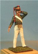 VID soldiers - Napoleonic russian army sets 8a0879059d79t