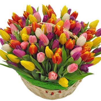 Поздравляем с Днем Рождения Елену (skarabeya) D183e5a1e3fdt