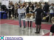 """ЕВРАЗИЯ-2012"" 61bc9f515fe0t"
