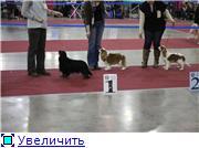 """""""ЕВРАЗИЯ-2012"""" C0a8440dc9cct"""