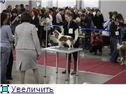 """""""ЕВРАЗИЯ-2012"""" 2fe1d3d157e5t"""