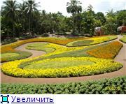 Таиланд.Паттайя 08174ea378a3t