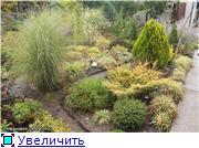 Cад Людмилы Ивановой из черкасс E4164b0c39fbt