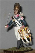 VID soldiers - Napoleonic wurttemberg army sets 748170246a19t