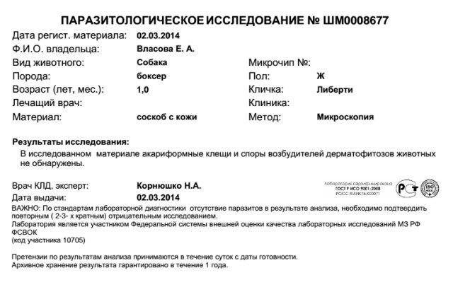 Москва, Либерти, девочка 1,5 года 9bedefdbbee4