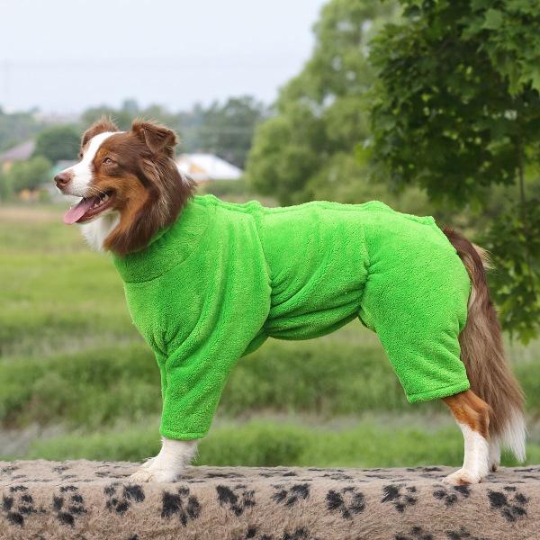 Интернет-зоомагазин Red Dog: только качественные товары для  - Страница 11 24f1739df946