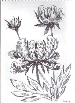 Рисунки ручкой 02e90829a7d7t