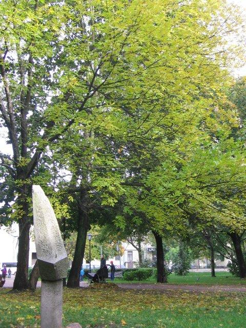 Фото конкурс: Осень в моем городе  Ca5e25cca39e