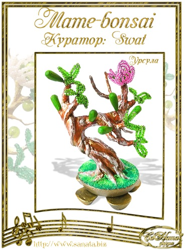 """Галерея """"Mame-bonsai"""" Fd6e0d7f052dt"""