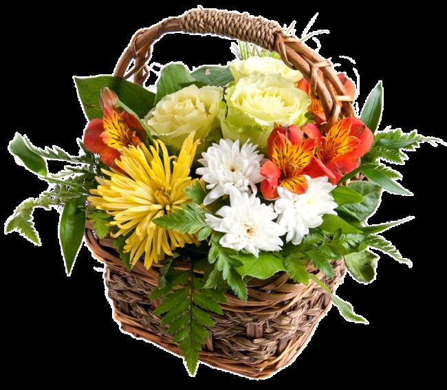 13.10.1253. Прощение - это аромат, который дарит цветок, когда его топчут. Bcac77020400