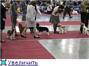 """""""ЕВРАЗИЯ-2012"""" Ee0412c2c14ct"""