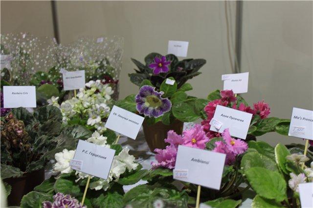XIX Международная выставка Ландшафт и Приусадебное хозяйство-2012 8eb426ab4a74