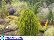 Cад Людмилы Ивановой из черкасс 3c3014d64bbft