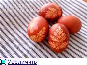 Красим пасхальные яйца 03831cafbc58t