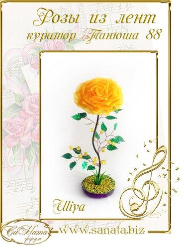 Награды Uliya 43e601173086t