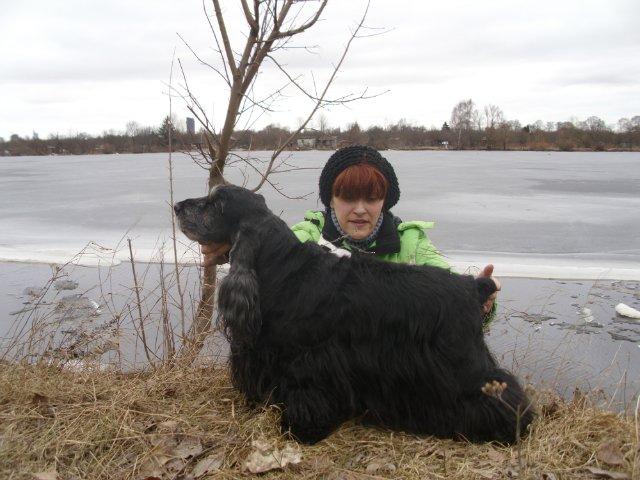 Собаки Татьяны Моисеенковой, кот Мензурка - Страница 3 22dc280b302c