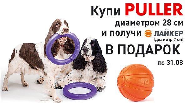 Интернет-магазин Red Dog- только качественные товары для собак! - Страница 4 56eea1b707aa