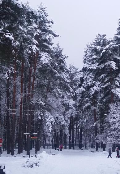Зимняя сказка на наших фотографиях - Страница 14 Af7ba05c7fb3