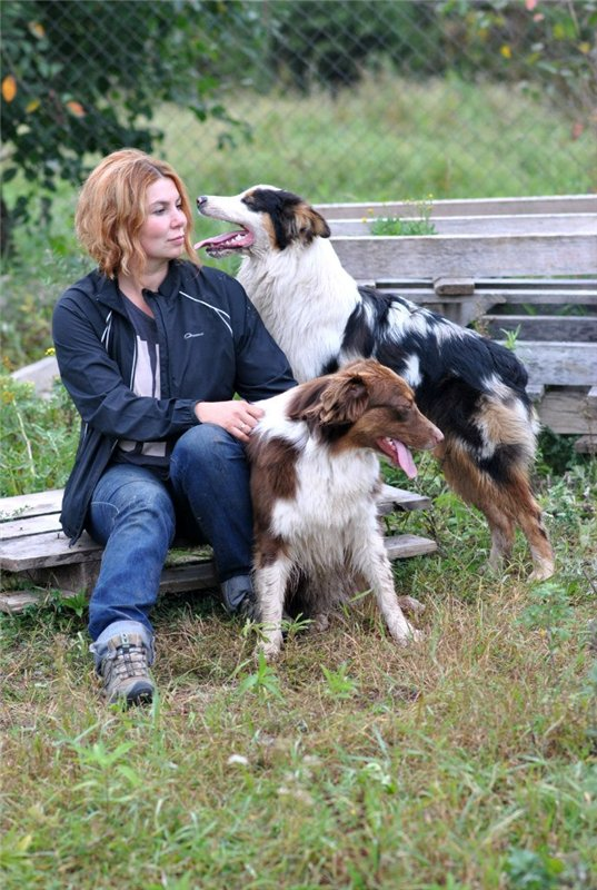 Мои аусси - Зефир и Мисси.....и немного их тусовки - джек рассел, хаски, маламут и акита... - Страница 2 Aa260f70a30c