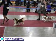 """""""ЕВРАЗИЯ-2012"""" 62890bbaa4fat"""