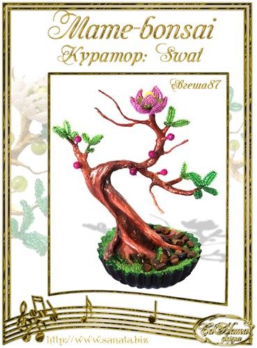 """Галерея """"Mame-bonsai"""" De83e8cc8645t"""