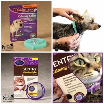 Интернет-зоомагазин Pet Gear - Страница 10 45fc22e29825t