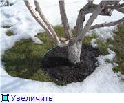 Весна идет, весне дорогу! - Страница 9 Dbe25f6420b1t