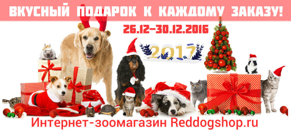 Интернет-магазин Red Dog- только качественные товары для собак! - Страница 3 87d403b8e8f9