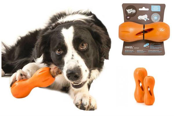 Интернет-зоомагазин Red Dog: только качественные товары для  - Страница 11 187a52720535