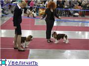 """""""ЕВРАЗИЯ-2012"""" 7ef65ea7aceft"""