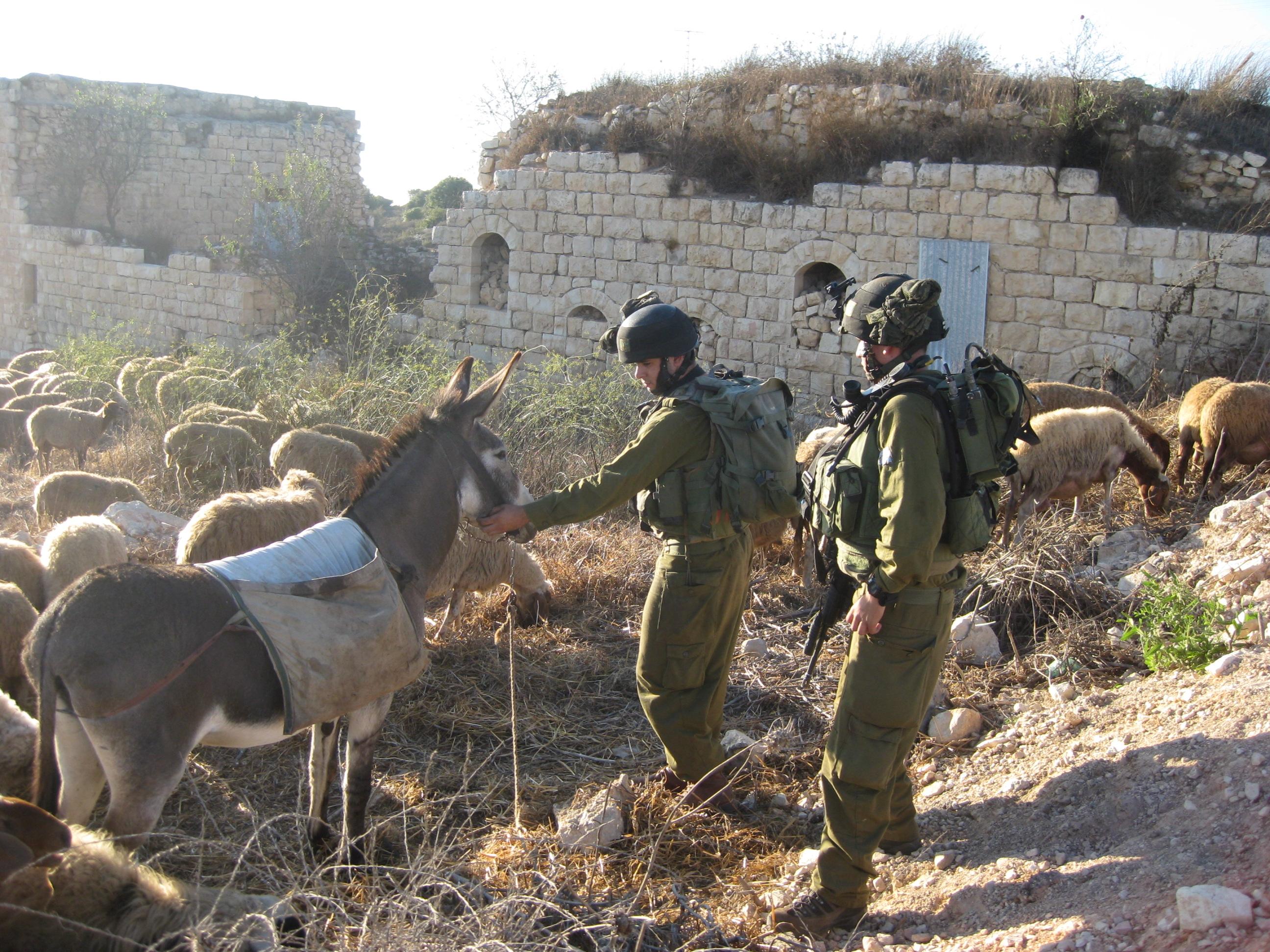 القدرات العسكرية للمقاومة الفلسطينة  4c932a22b482