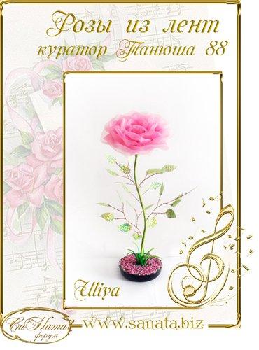 Награды Uliya F7c875e5fffct